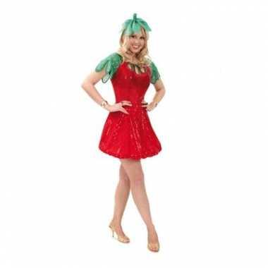Aardbeien carnaval kostuum jurkje dames
