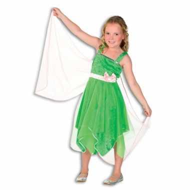 Carnaval  Elfjes kostuum jurkje vleugels groen
