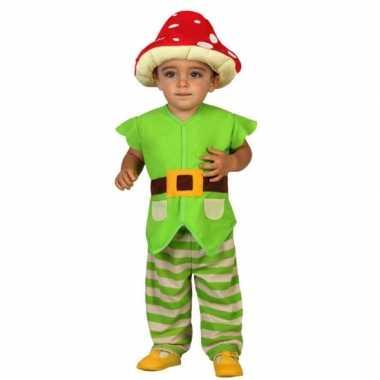 Carnaval  Groene kabouter kostuum peuters