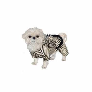 Carnaval honden kostuum zebra
