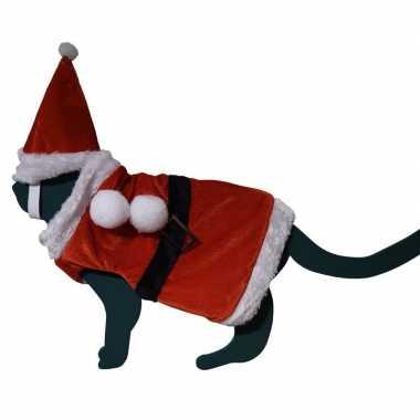 Carnaval katten / poezen kerstmankostuumje hoed one size