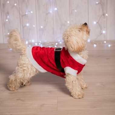 Carnaval kerstman kostuum hond