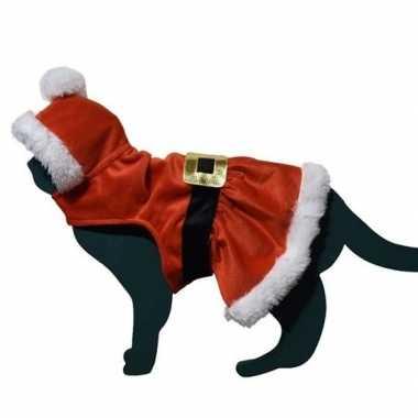 Carnaval kerstman kostuumje kostuum kat/poes