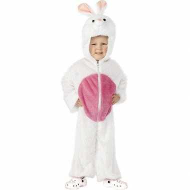 Carnaval konijnen/hazen kostuum kinderen