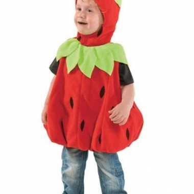 Peuter carnaval kleding aardbeitje kostuum